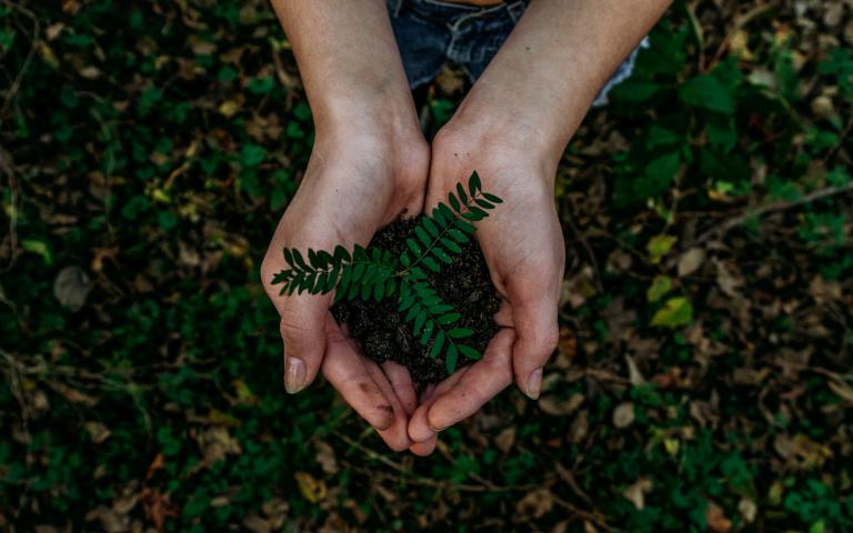 Cómo hacer de nuestro mundo un lugar más sostenible